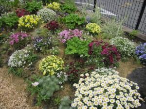 8-201205 華やかな庭