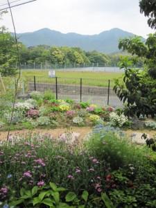 8-201205 家から見る庭と借景