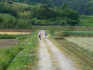 ⑦20140408 お散歩道